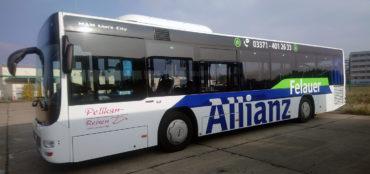 Pelikan_Allianz_Bus_Luk-DESIGN_1